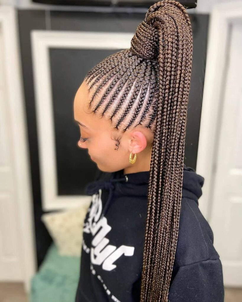 Cute Braids Hairstyles for ladies: Beautiful Styles to slay