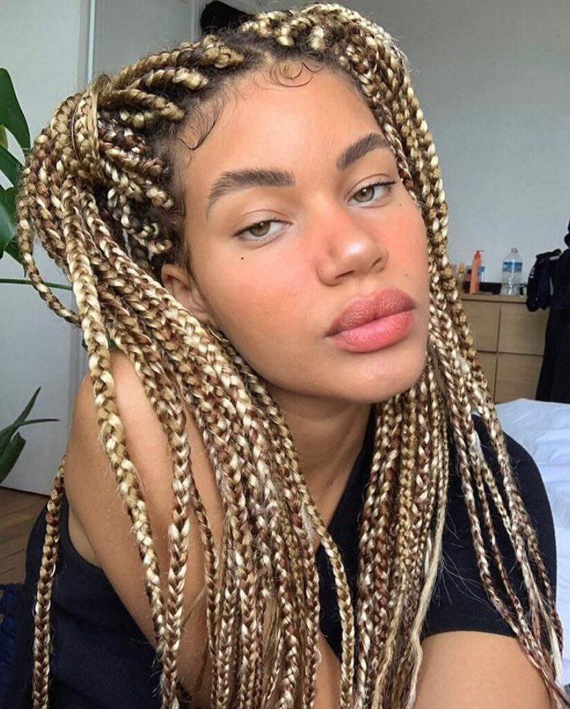 Braids Hairstyles 2021 Pictures