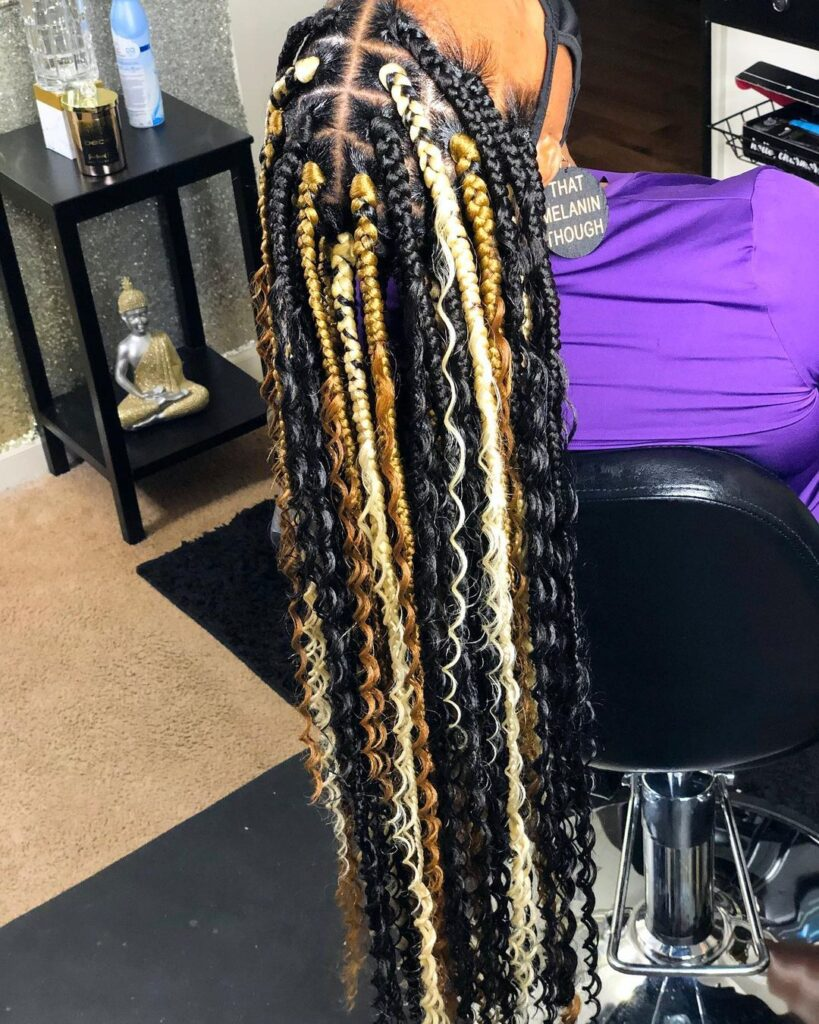 Natural Braids Hairstyles Pictures 2021 for Ladies