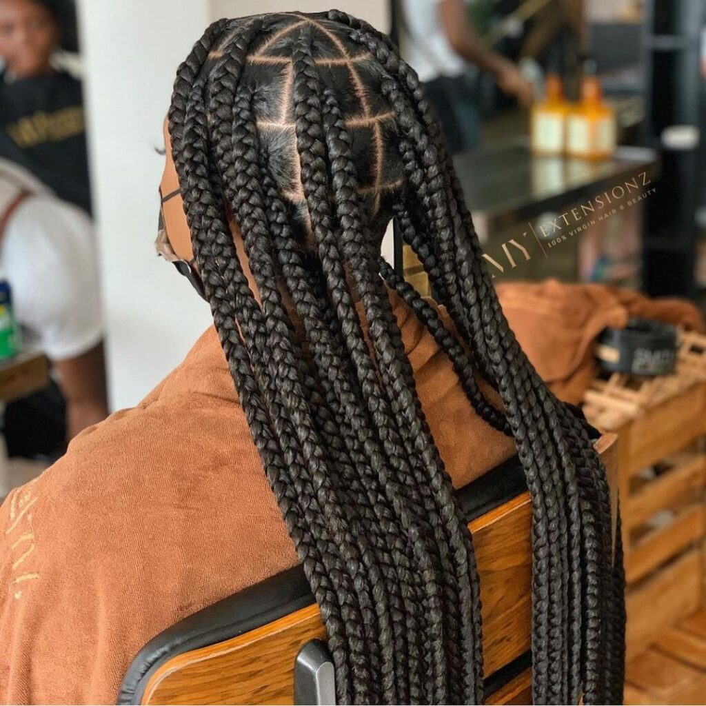 Latest Braids Hairstyles 2021 pictures For Ladies
